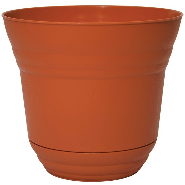 Mcpherson McPherson Round Plastic Pot Planter (Set of 6) by Wrought Studio