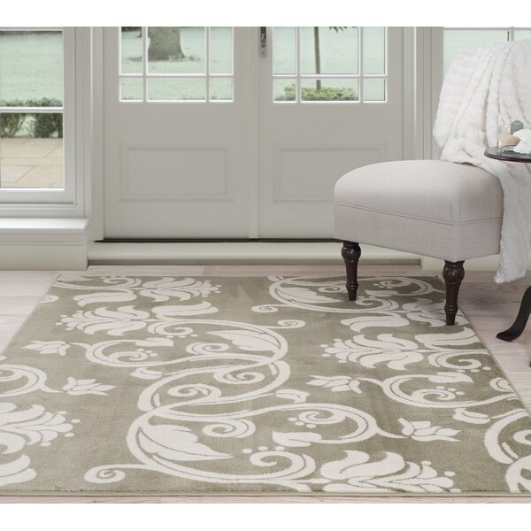Floral Scroll Green/Beige Area Rug by Plymouth Home