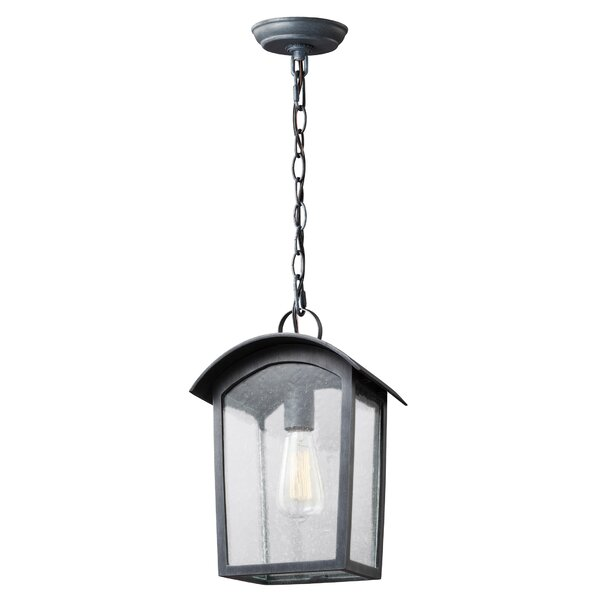 Lency 1-Light Outdoor Hanging Lantern by Gracie Oaks