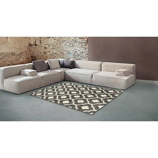 Best Price Hand Carved Trellis Titanium/White Area Rug By Brady Home