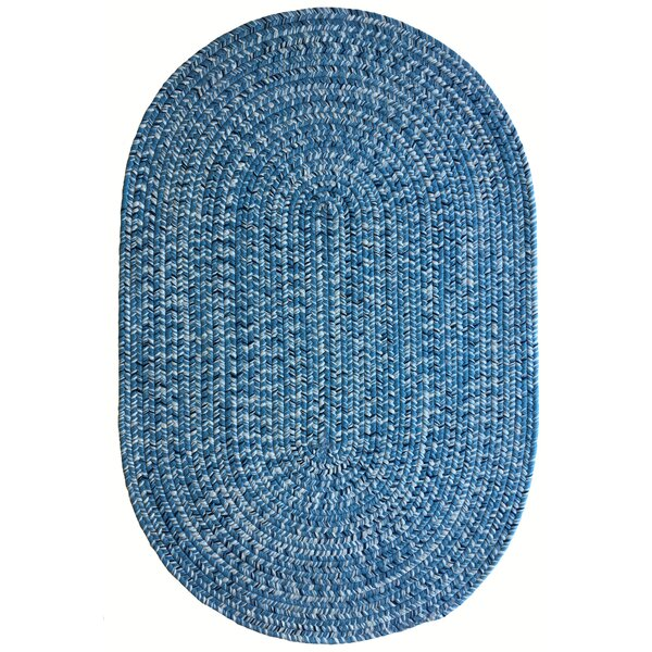 One-of-a-Kind Aukerman Hand-Braided Light Blue Indoor/Outdoor Area Rug by Isabelline
