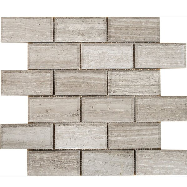 Wood Grain Beveled Brick 2 x 4 Stone Mosaic Tile in Gray Polished by Parvatile