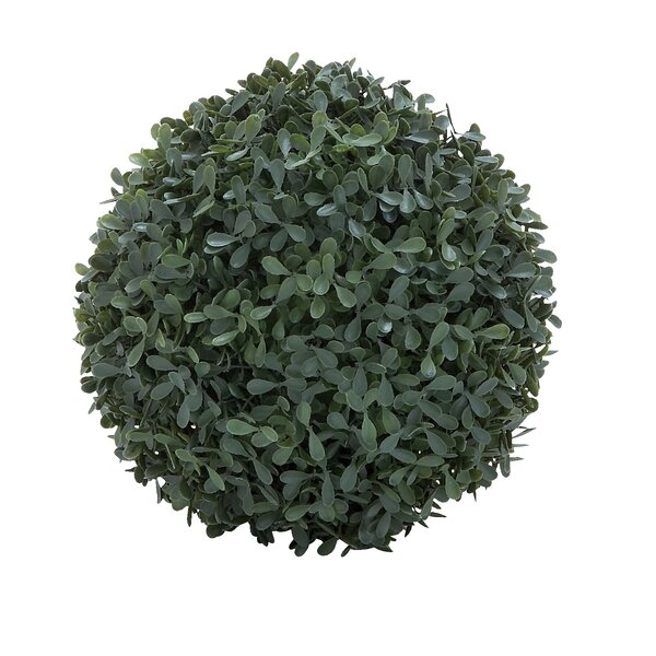 Boxwood Ball Tree by Cole & Grey