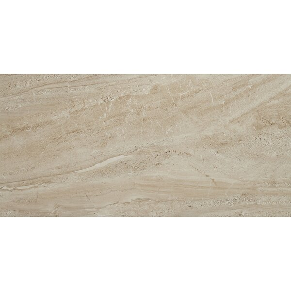 Florentine 12 x 24 Porcelain Field Tile in Nociolla by Daltile