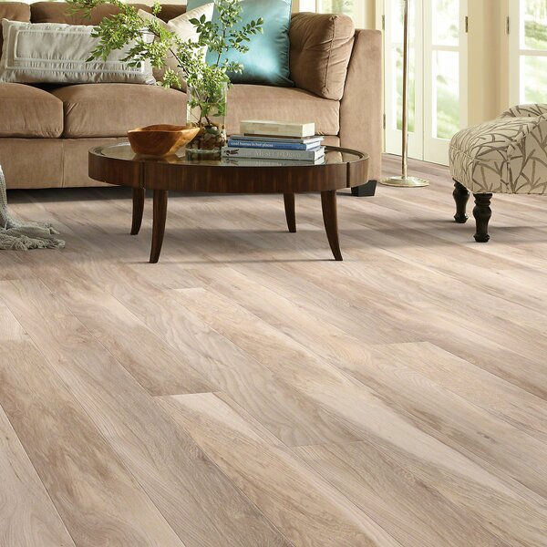 Mont Blanc 8 x 79 x 10mm Hickory Laminate Flooring in Glacier by Shaw Floors