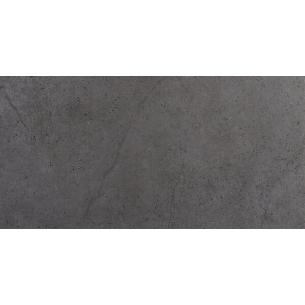 St Moritz II 12 x 24 Porcelain Field Tile in Gray by Emser Tile