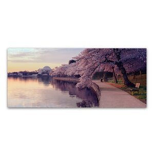 'Cherry Blossoms Jefferson Memorial' by Gregory O'Hanlon Photographic Print on Wrapped Canvas by Trademark Fine Art