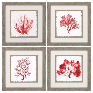 Red Coral 4 Piece Framed Graphic Art Set by Propac Images