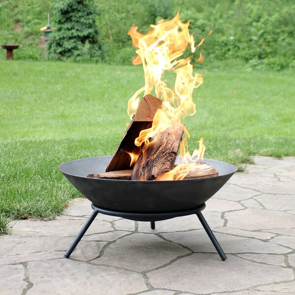 Eckard Raised Cast Iron Wood Burning Fire Pit By Wrought Studio
