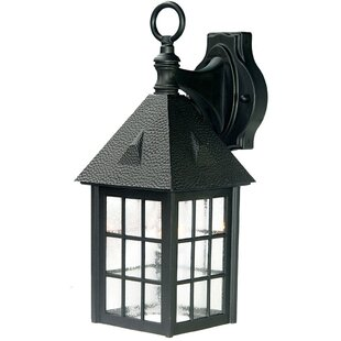 Find a Joy 1-Light Outdoor Wall Lantern By Highland Dunes