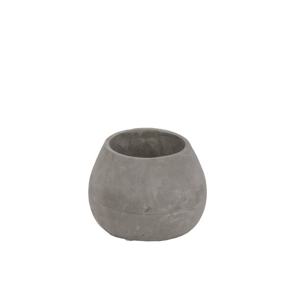 Westerham Bellied Flower Cement Pot Planter by Williston Forge