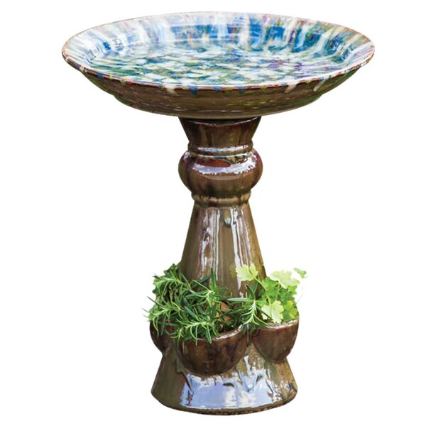 Delia Birdbath by Evergreen Flag & Garden