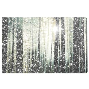 'Magical Forest Silver' Graphic Art Print on Canvas by Willa Arlo Interiors