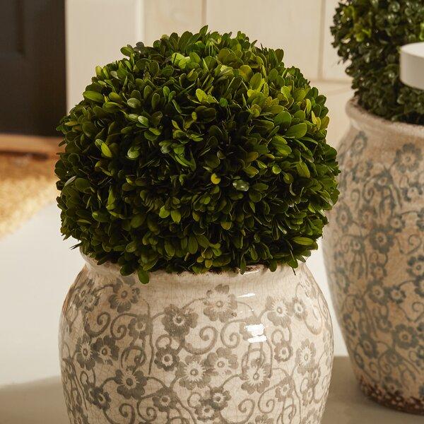 Julienne Round Ceramic Pot Planter by Birch Lane™