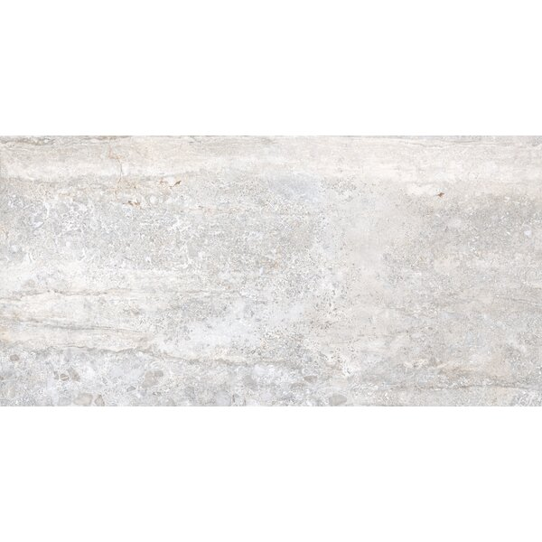 Vstone 19 x 38 Porcelain Field Tile in Silver Matte by Tesoro
