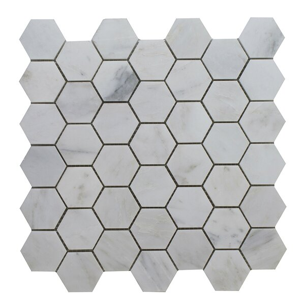 Arabescato Hexagon Polished 12 x 12 Glass Mosaic Tile in Gray by Seven Seas