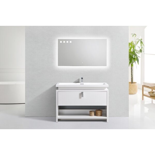 Haycraft Modern Cubby Hole 47 Freestanding Single Bathroom Vanity by Orren Ellis