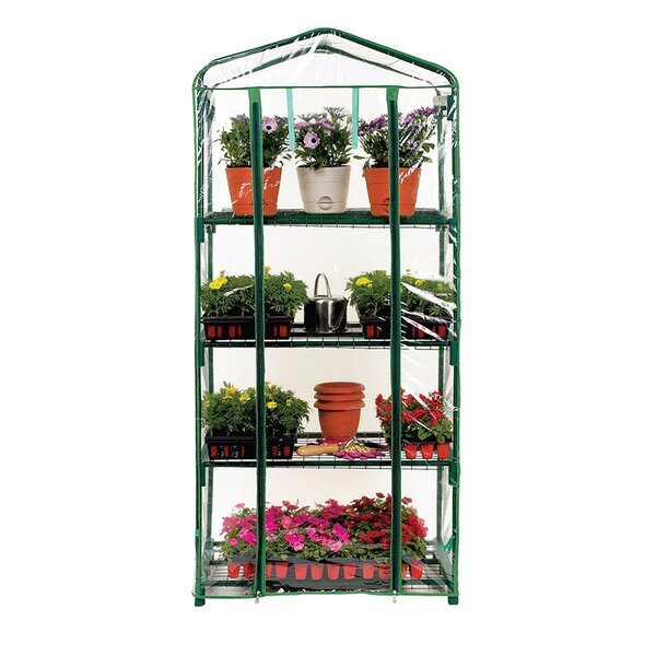 4 Tier 2.25 Ft. W x 1.58 Ft. D Growing Rack by Misco Home and Garden