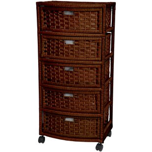 Save  sc 1 st  Wayfair & Rattan/Wicker Storage Drawers Youu0027ll Love | Wayfair
