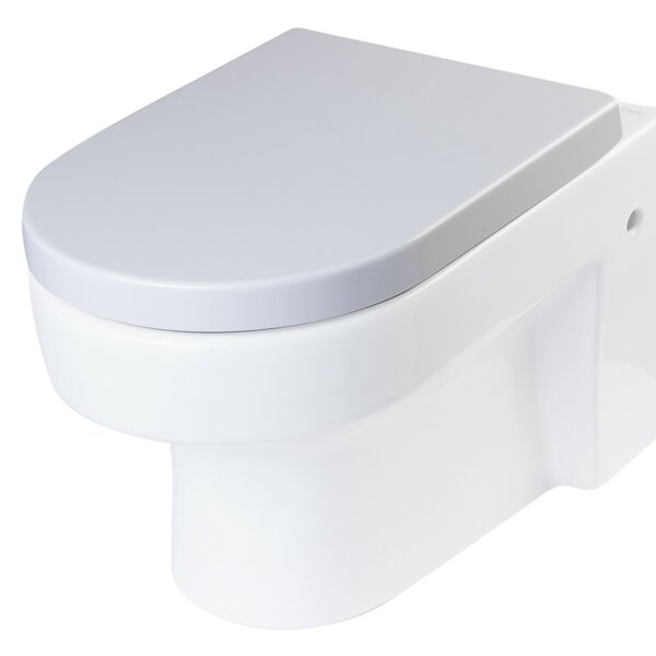 Replacement Soft Closing Elongated Toilet Seat by EAGO
