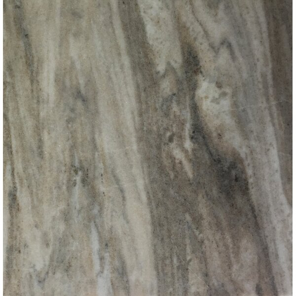 Palissandro 12 x 12 Marble Field Tile in Gray by Seven Seas