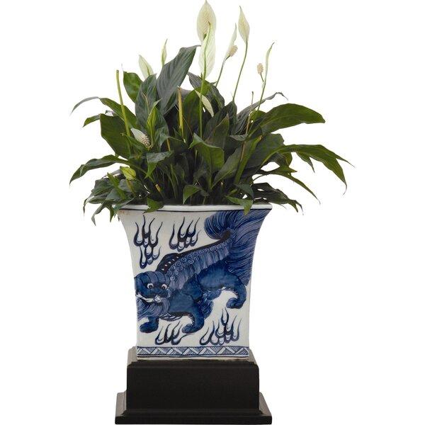 Chow Porcelain Pot Planter by Port 68