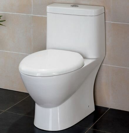 Modern Dual Flush Elongated One-Piece Toilet by EAGO