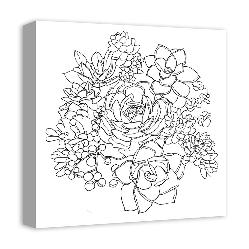 Bungalow Rose Succulent Sketch Drawing Print On Wrapped Canvas Wayfair