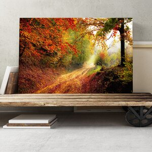 Landscape Autumn Fall Woodland Forest Photographic Print on Canvas