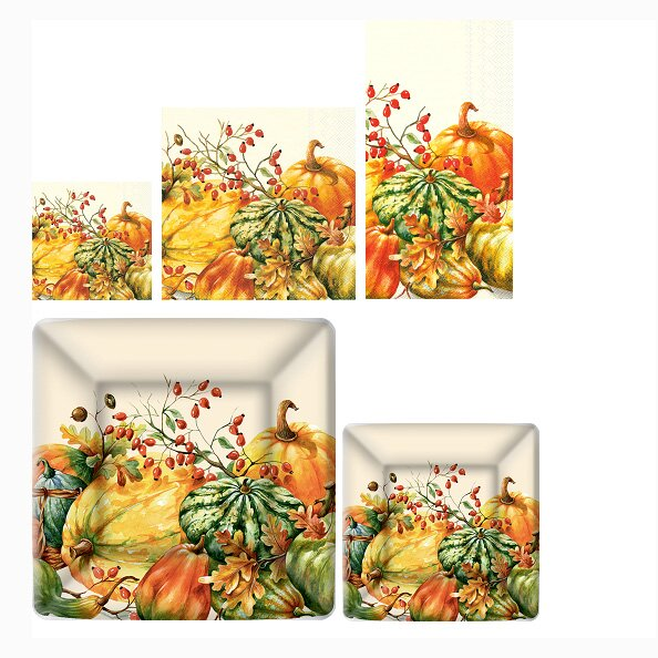 Calabaza 5 Piece Paper Dinner Set by Boston International