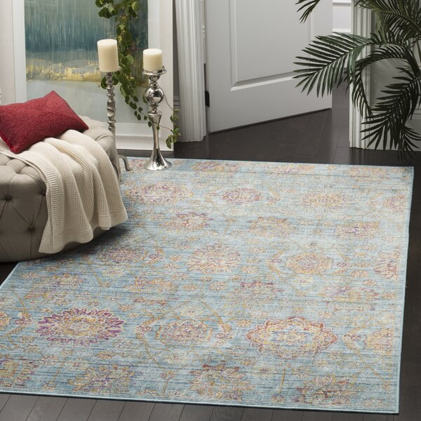 Sasha Blue/Orange Area Rug by Safavieh