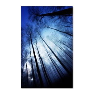 Blue Forest by Philippe Sainte-Laudy Photographic Print on Wrapped Canvas by Trademark Fine Art
