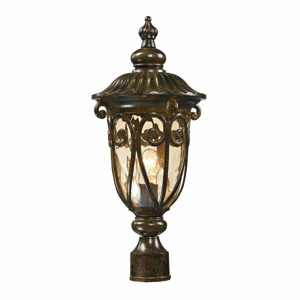 Boyd Outdoor 1-Light Lantern Head by Fleur De Lis Living