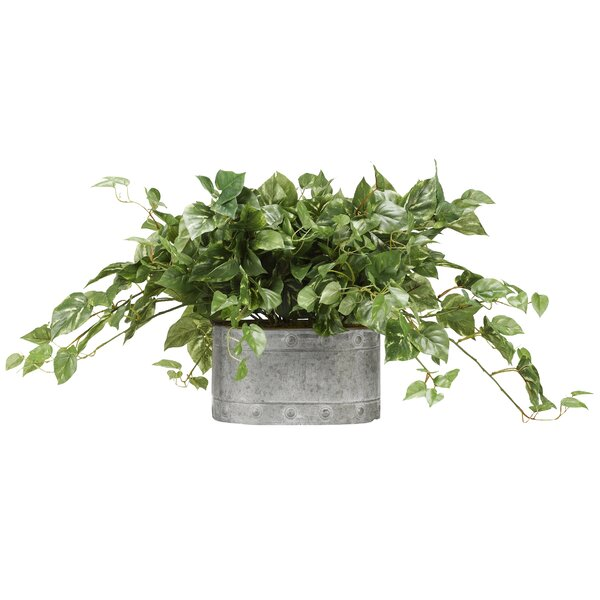 Pothos Metal Ivy Plant in Planter by Gracie Oaks