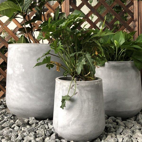 Gann Cylinder 3-Piece Pot Planter Set by Williston Forge