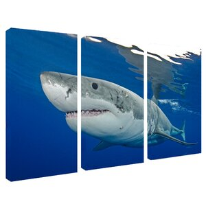 'Shark' 3 Piece Photographic Print on Wrapped Canvas Set by Latitude Run