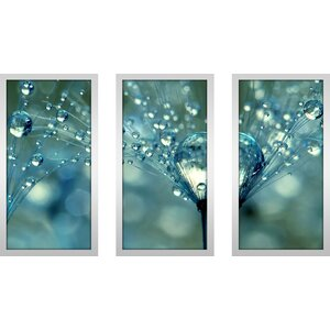 Blue Sparkles by Sharon Johnstone 3 Piece Framed Photographic Print Set by Picture Perfect International