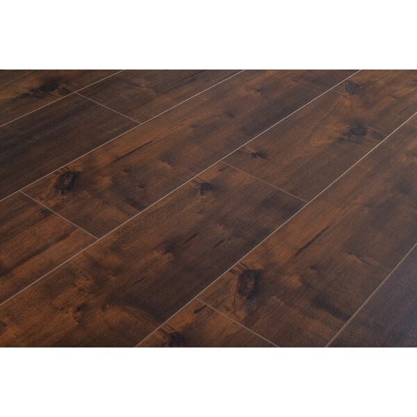 Dombrowski 8 x 48 x 12mm Maple Laminate Flooring in Borneo by Serradon