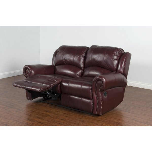 Brazil Dual Reclining Loveseat by Darby Home Co