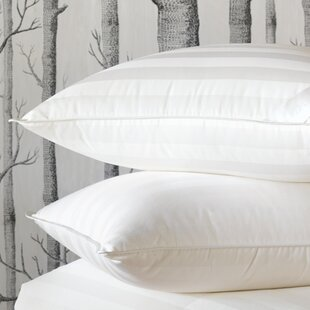 Rhapsody Luxe Down Pillow ByEastern Accents