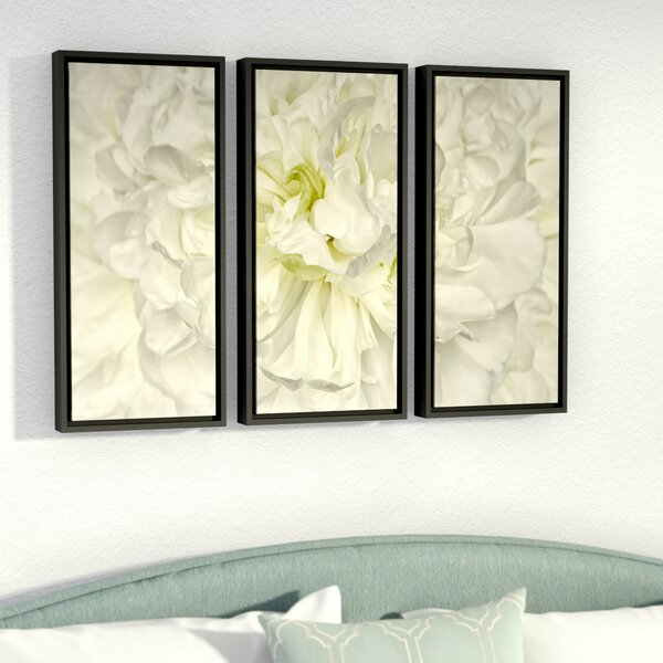 Pure White Peony 3 Piece Framed Photographic Print Set by House of Hampton
