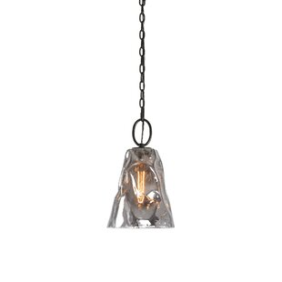 Shopping for Holyoke Smoked Glass 1 -Light LED Bell Pendant By World Menagerie