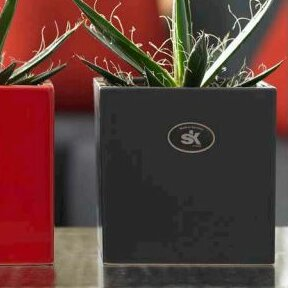Latina Clay Planter Box by SK USA