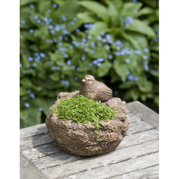 Reales Bird Cast Stone Pot Planter by August Grove