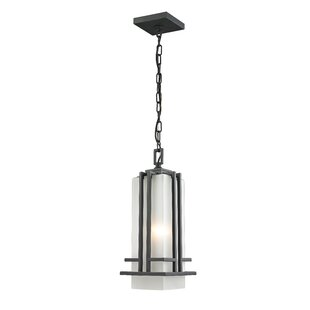Savings Weitzel 1-Light Outdoor Pendant By Winston Porter