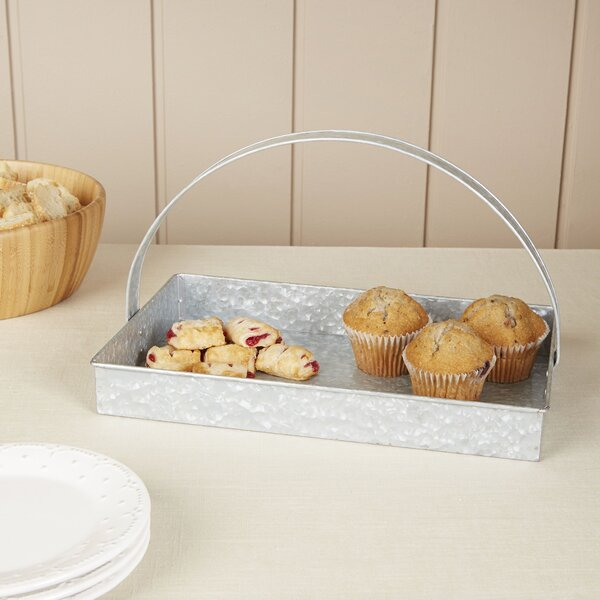 Thoby Galvanized Tray with Handle by Birch Lane™