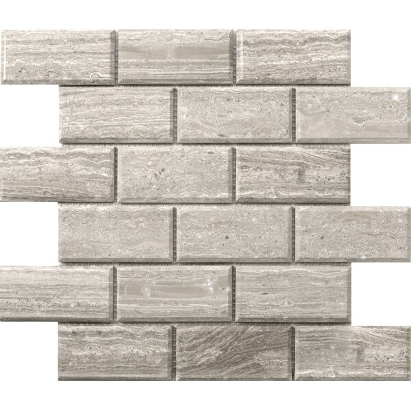 Metro Bevel 2 x 4 Marble Mosaic Tile in Gray by Emser Tile