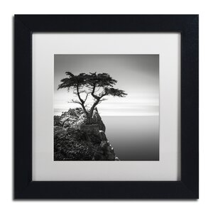 The Lone Cypress by Dave MacVicar Framed Photographic Print by Trademark Fine Art
