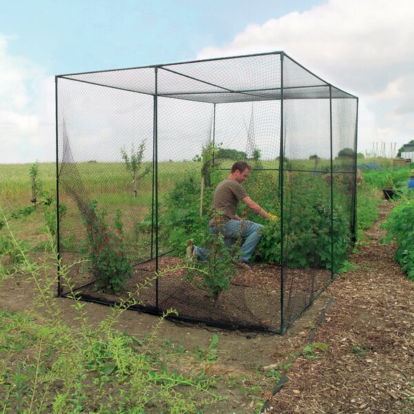 6.6 Ft. W x 9.1 Ft. D Hobby Greenhouse by World Source Partners