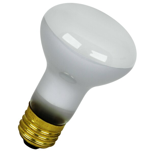 120-Volt Light Bulb (Pack of 2) by FeitElectric